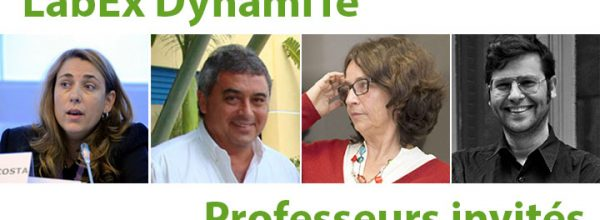 LabEx DynamiTe's visiting professors : 3 new interviews