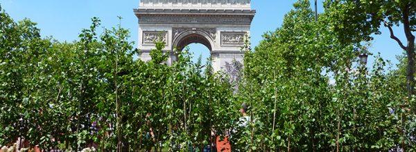 """Appel à communication – Colloque """"Prendre en charge la biodiversité à l'échelle du Grand Paris : acteurs, territoires et projets"""""""