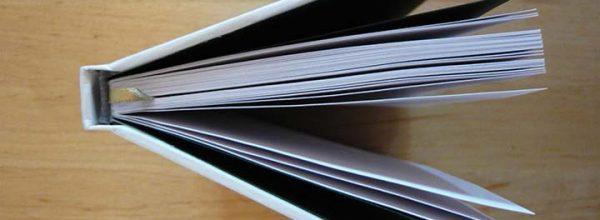 Nouvelles publications du Groupe de Travail «Mobilités et spatialités»
