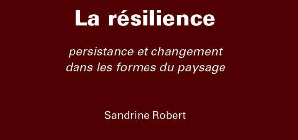 Couverture de l'ouvrage de Sandrine ROBERT consacré à la résilience
