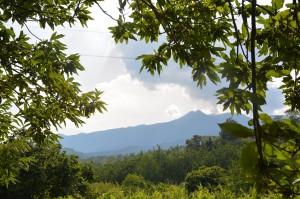67 - Sortie de terrain dans la région de l'Etna